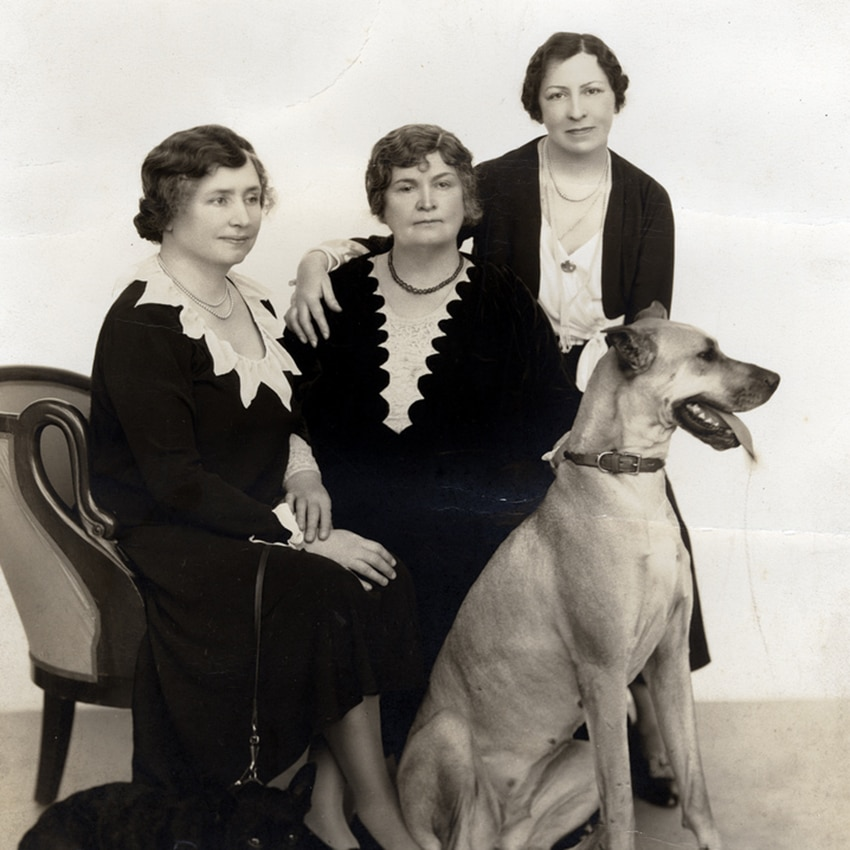 Helen Keller, Anne Sullivan Macy and Polly Thomson sit next to each other, with a Great Dane named Sieglinde in front of them.
