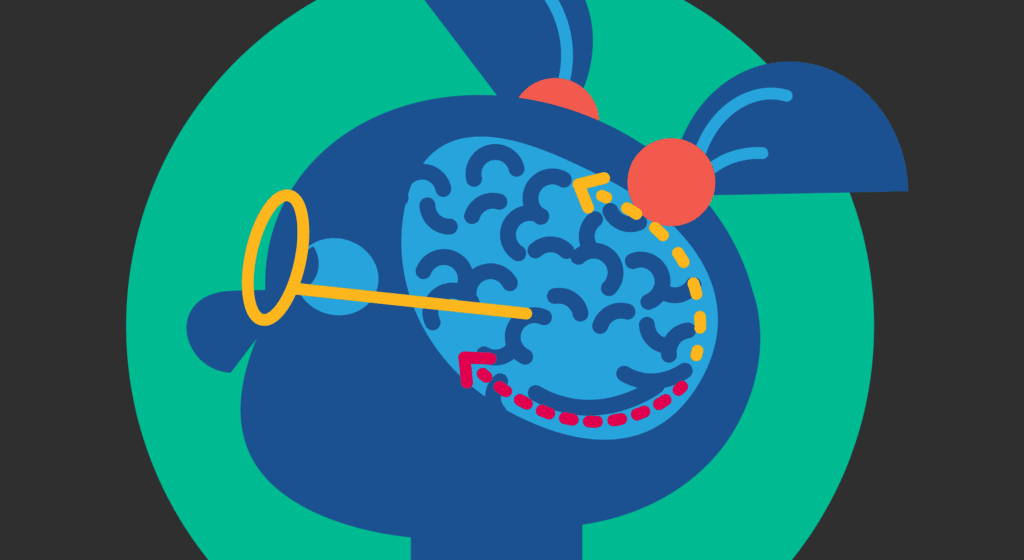 Drawing of girl in blue with an image of the brain and arrows that show the dorsal and ventral streams